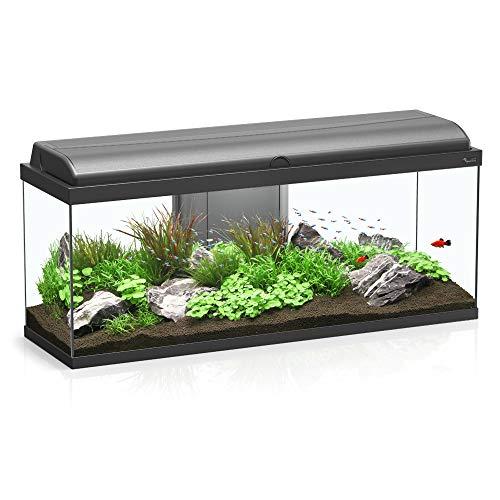 Aquarium Aquadream 100 - Acuario, Color Negro