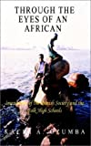 Through the Eyes of an African: Impressions of the Danish Society and the Folk High Schools