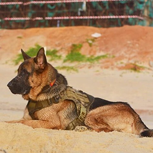 Product Image 7: ICEFANG Tactical Dog Harness with 2X Metal Buckle,Dog Walking <a href=