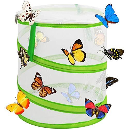 Honeyy faltbares Insekten- und Schmetterlings-Habitat Schmetterlingskäfig Insektennetz Terrarium Pop-Up für Kinder (30 x 35 cm)