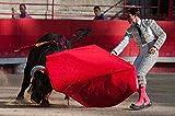 BZAHW 1000 pcs Puzzle para Adultos Juegos Plaza de toros Juegos Infantiles Juguetes Juguetes decoración del