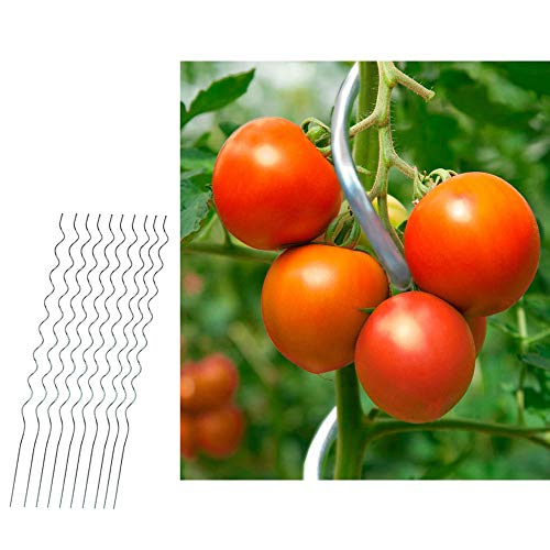 10er Set Tomatenstäbe 110cm Tomatenspiralstab Tomatenstange Rankhilfe Pflanzstab Stahl verzinkt Kletterpflanzen-Stab