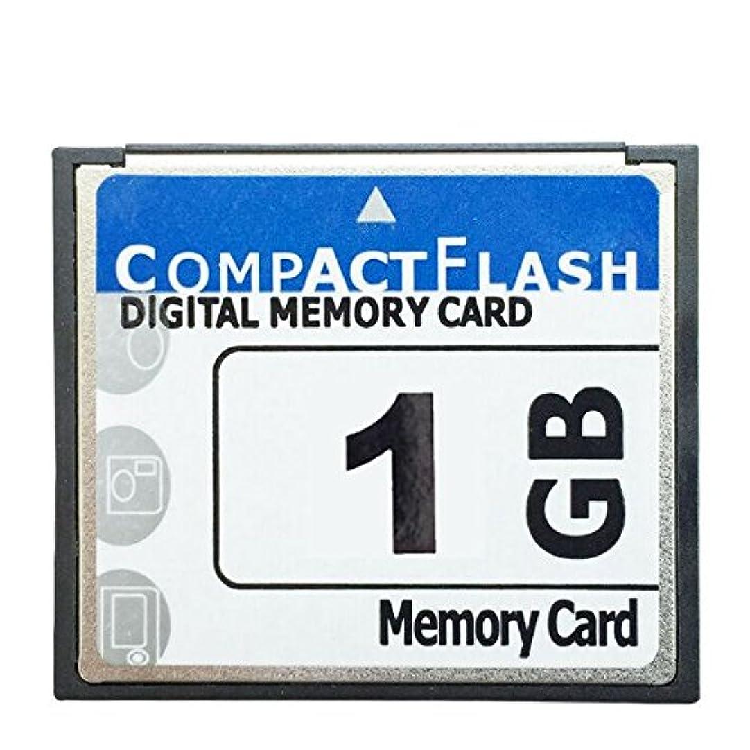 画面恨み滑り台Yiteng カメラ 携帯電話 GPS MP3 PDASに適用 1GB CF デジタル メモリ カード