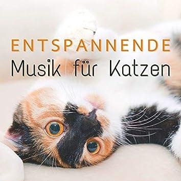 Entspannende Musik für Katzen: Beruhigende Lieder für Katzen, um Sich Mehr Geliebt und Geschätzt zu Fühlen