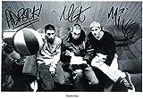 FM Beastie Boys Signiert Autogramme 21cm x 29.7cm Plakat