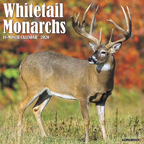 Whitetail Monarchs 2020 Wall Calendar