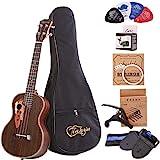 Paisen Tenor ukulele 26 pulgadas ukelele profesional de palisandro envía un conjunto completo de accesorios