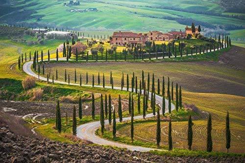 Papermoon Velden in Toscane Vlies Fotobehang 350x260cm