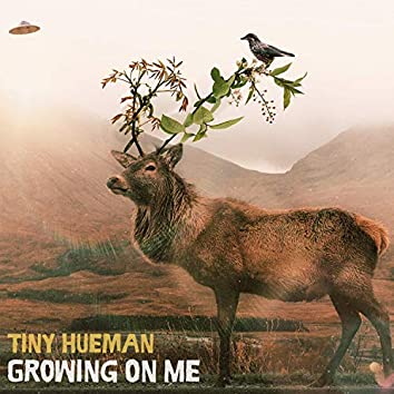 Growing on Me