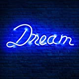 Koicaxy Neon Sign, Led Neon Light Wall Light Wall Decor, Battery or USB Powered Light Up Acrylic Neon Sign for Bedroom, Kids Room, Living Room, Bar, Party, Christmas, Wedding (Dream 2)