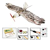 Dancing Wings Hobby RC Airplane 3CH Radio Remote Controlled Electronic Aircraft EPP Plane Model Mini Eagle Wingspan 1200mm Slow Flyer Biomimetic Aircraft Kit with Power System E1504