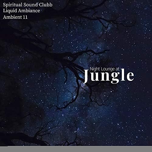 Serenity Calls, Ambient 11, Mystical Guide, Liquid Ambiance, Spiritual Sound Clubb, Yogsutra Relaxation Co, COSMK & Sanct Devotional Club