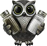 DWK - Little Hoot's Spice - Collectible Owl Salt & Pepper Shaker with Figurine Owl Holder Home Décor Kitchen Accessory Dining Accent 3-Piece Set, 5.6-inch