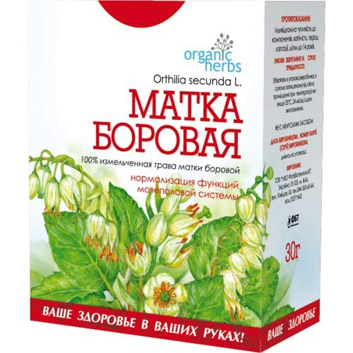 Sidebells Wintergreen Herb (Orthilia Secunda) Матка Борова 100% Natural Non GMO by QG group