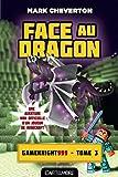 Face au Dragon: Minecraft - Les Aventures de Gameknight999, T3