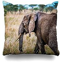 サバンナセレンゲティリアルパークアフリカネイチャーデザインホーム枕ケーススクエアサイズ18x18インチジッパー式装飾枕カバーに枕カバービッググリーンアフリカゾウを投げる