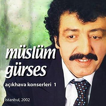 Açıkhava Konserleri, Vol. 1 (Istanbul, 2002)