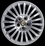 2.Automotive Copricerchi