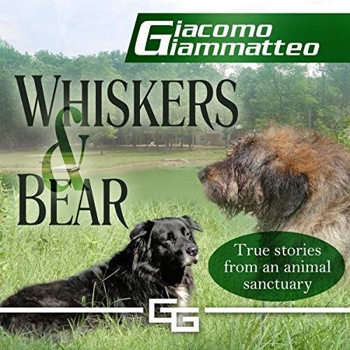 Whiskers and Bear Titelbild