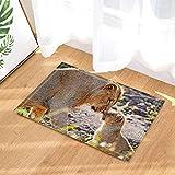Kwboo Decoración de Animales Silvestres, Safari Lion Madre e Hijo Jugando contra Las alfombras de baño del Bosque, alfombras Antideslizantes Felpudo en el Piso de Las Puertas de Entrada