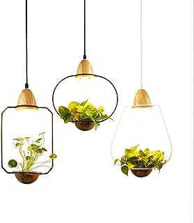 Modern Pendant Lamp Hanging Lamp Plant Flower Pot Chandelier Ceiling Light Creative Iron Dining Room Pastoral Office Light Fixture Green Bookstore Decoration (White, C)