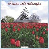 Texas Landscape 2021 Wall Calendar: Official Texas State Calendar 2021