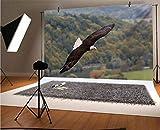 Eagle - Fondos de vinilo para fotos (10 x 8 pies), diseño de rey de cielos volando sobre el bosque y las montañas de Estados Unidos