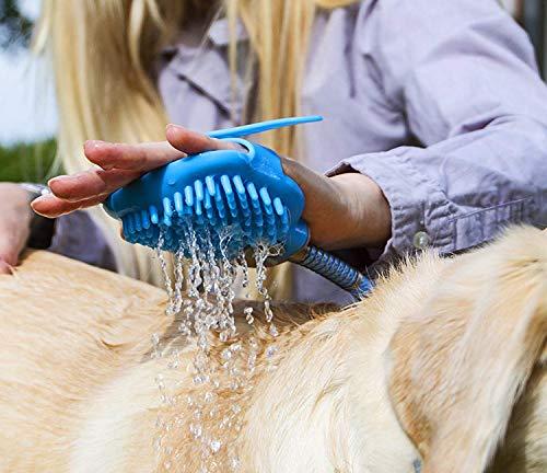 NGwenyicanI Kit Ducha 3 1 Mascotas Cepillo Dental