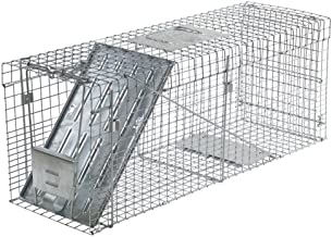 Havahart 1089 Collapsible One-Door Live Animal Cage Trap for Raccoon, Stray Cat, Groundhog, Opossum, and Armadillos