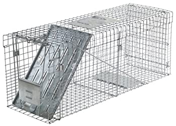 Live Animal Cage Trap for Raccoon: photo