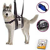 Veterinarian Approved Dog Support Harness + Hair Remover Glove - Dogs Sling Lift