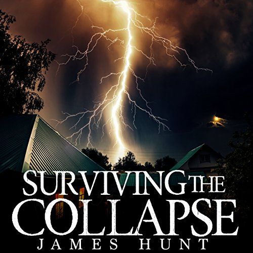 Surviving the Collapse: Book 2 audiobook cover art