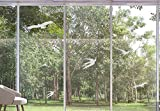 Window Alert Bird Stickers, Anti-Collision Silhouettes Decals Glass Door Protection and Save Birds (24 Silhouettes)- Transparent
