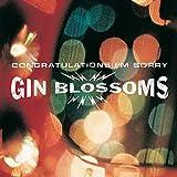 Congratulations I'm Sorry von Gin Blossoms