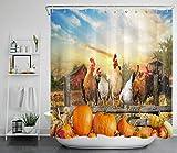 Sunset Farmhouse Herbst Kürbis Huhn Duschvorhang für Badezimmer,wasserdichtes & schnelltrocknendes Polyester,hochauflösendes Muster,12Haken,183x183cm