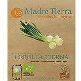Madre Tierra - Semillas Ecologicas de Cebolla Tierna -( Allium Cepa) Origen Figueres- Girona- España - Semillas Especiales - 1.5 gramos