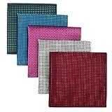 Shlax&Wing 5 Pieces Assorted Pañuelo De Bolsillo Para Hombre Handkerchiefs