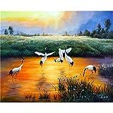 Pintura Al Óleo Digital De Bricolaje Prairie Lake Patrón De Grúa De Corona Roja Fomentan El Interés De Principiantes