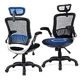 Ergonomic Office Chair - Ergousit...
