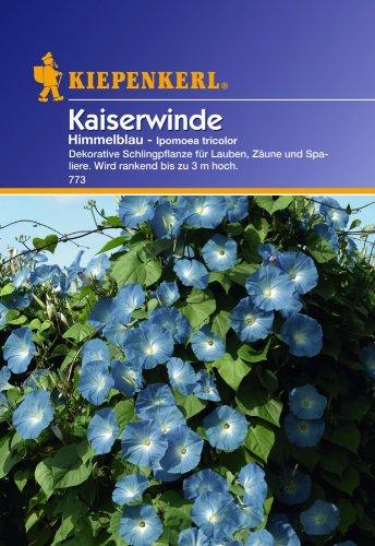 Sperli Blumensamen Kaiserwinde Ipomoea tricolor, blau/grün