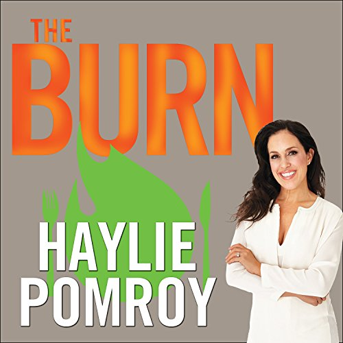 The Burn audiobook cover art