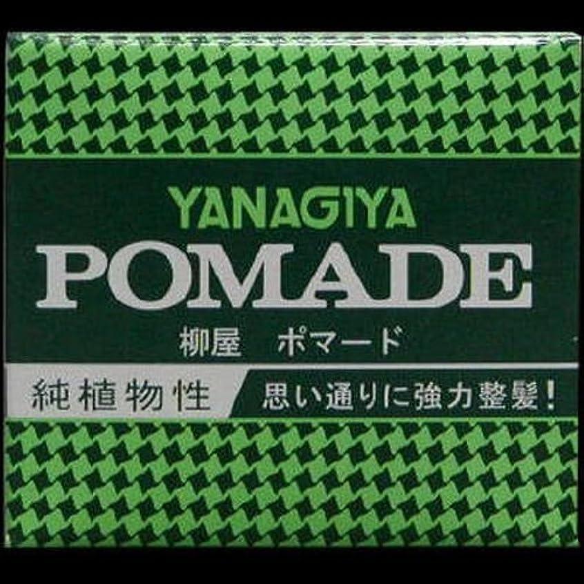 ポンペイ看板暴行【まとめ買い】柳屋 ポマード小 63g ×2セット