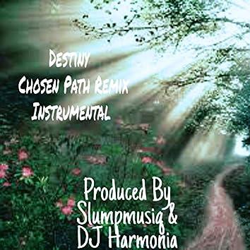 Destiny (Chosen Path Remix)