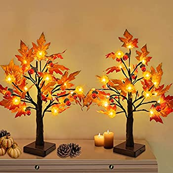 Best autumn decorations for home Reviews