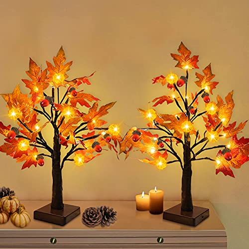 TURNMEON 2 Pack 18 Inch Prelit Fall Maple Tree with 48 LEDs Timer...