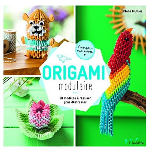 Origami modulaire: 20 modèles à réaliser pour déstresser (Créer pour mieux vivre)