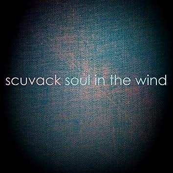 Soul in the Wind