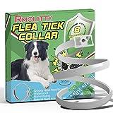 Rmolitty Collar Antiparasitario Perro, Collar para garrapatas, 1 Paquetes Aceite Natural 8 Meses de Protección para Grande Medio Pequeña Perros (57cm)