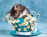 JXWH Animal gato5D Diamante Pintura Cristal Diamante Bordado Pinturas Artes Kit de Artes Manualidades Lienzo Pared Decoración40x50cm