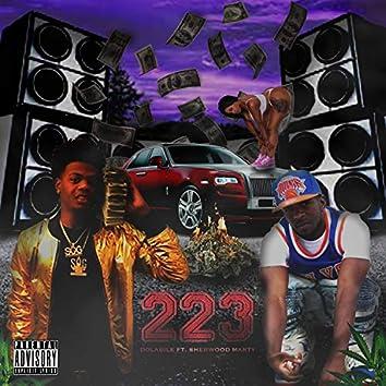 223 (feat. Sherwoodmarty)